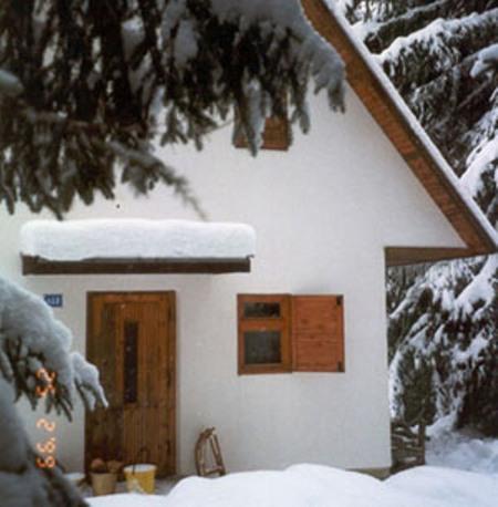 jan-ski-1999-4.jpg